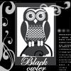black_owlet userpic