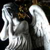 Doctor Who - Weeping Angel