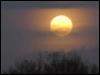 Луна в дымке