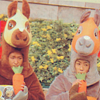 a:horses drink carrot juice?