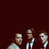 miss california.: [spn] team free will - business class.