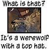 confessions of a bathrobe werewolf: top hat