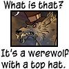 confessions of a bathrobe werewolf: top hat