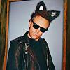 Cat Jeff