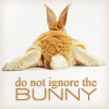 Campaspe: Original \\ plot bunny; do not ignore