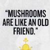 SHROOOOOMS!