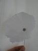 milknot userpic