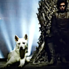 [Game of Thrones] Jon and his wolf.
