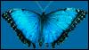 tierschutzmb userpic