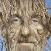 Лесной человек