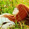 in fields of flowers