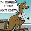Кенгуру)