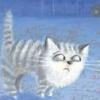 Сомневающийся кот