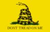Flag, Gadsden