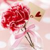 цветок и сердечко