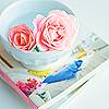 manatsu_no_yume: Cloud flowers