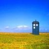 sunny TARDIS field