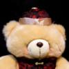 Douglas Triggs: doug bear