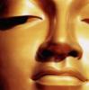peacebuddha