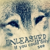Unleashed-If you could only see
