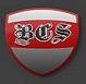 beezcombatsys userpic