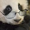 умный панда