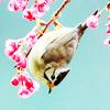onelove userpic
