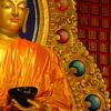 goldbuddha