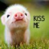 piggy kisses (sunlitdays)