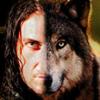 sherwoodwolf userpic