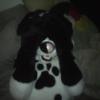 anji_pup userpic