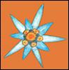 Эмблема Эдельвейс pic