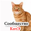 сообщество котэ, аватар