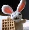 Leyosura: psycho waffle bunny