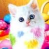 kisa_marmelad userpic