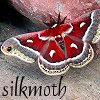 silkmoth101: stephen king