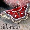 silkmoth101