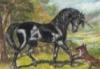blackunicorn46