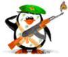 Pingwi
