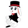 Pimp kanin