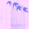 mochalatt3: Random // Birds