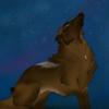 Traveler - Midnight Howl