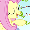 MLP - Fluttershy - I'm awesome.