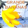 Vesta: Banana