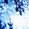 cck_brit: Dec 2007