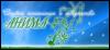 anima_studio userpic