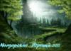 Нолдор, потаённые королевства, Таинственный лес