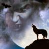 Werewolf Daily