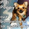 NavyVet90: Plot Puppy