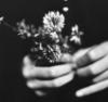 руки цветы